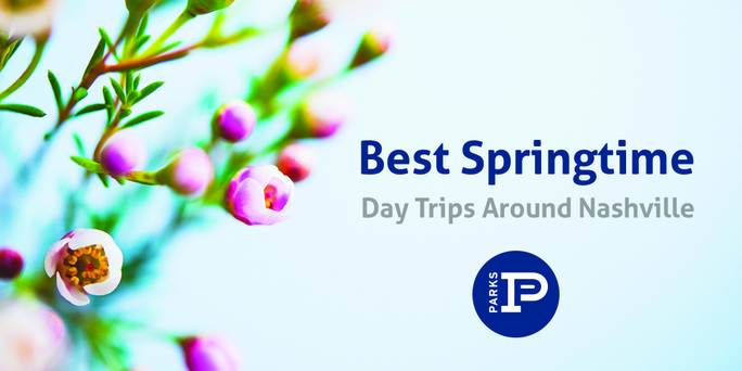 preview-full-Bestspringtrips
