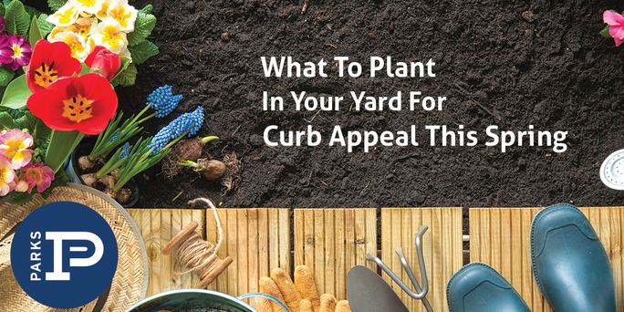 preview-full-Whattoplant_curbappeal